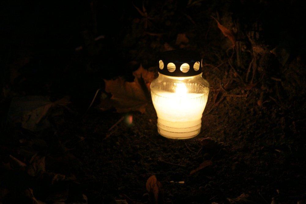 Name:  20121101 C15819 Schoenbaum Friedhof.jpg Hits: 643 Größe:  75.7 KB