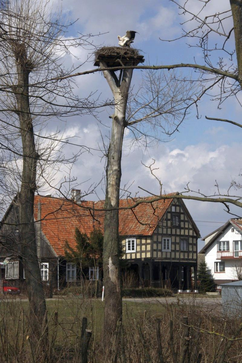 Name:  20130413 C18712 Marienau Vorlaubenhaus Rempel.jpg Hits: 279 Größe:  203.4 KB
