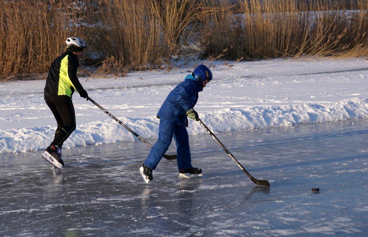 Name:  1702111 SA608474 Eishockey Elbinger Weichsel.jpg Hits: 137 Größe:  213.6 KB
