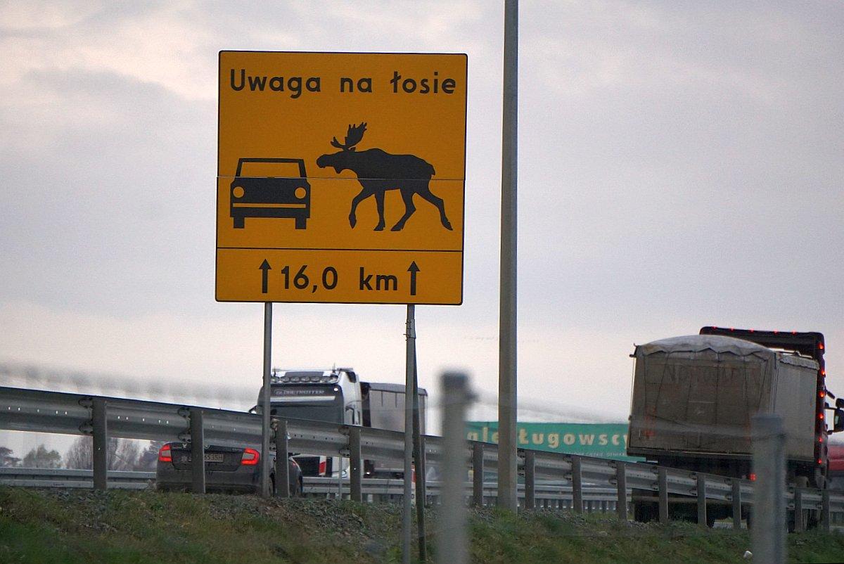 Name:  191202 SA6168593 Tiegenhof Autobahn Warnschild Elch.jpg Hits: 186 Größe:  131.9 KB